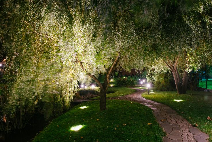 Uplighted willow creates magical reflections in the nearby pond. Lighting design by Belisama Lighting and the lighting designer Kamil Akhmedov.