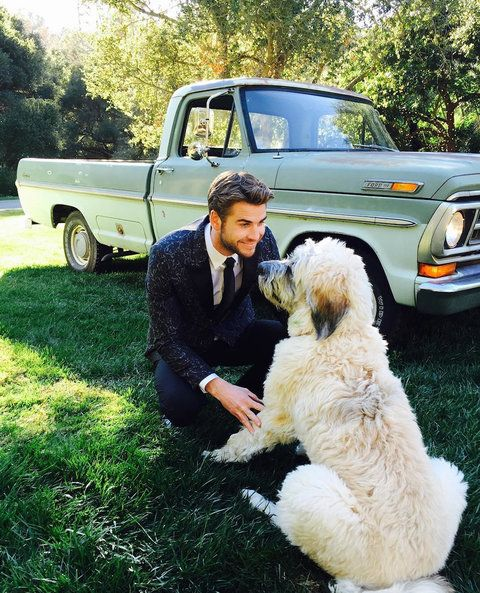 Celebrity Pets and Their Famous Parents - Dora and Liam Hemsworth - from InStyle.com