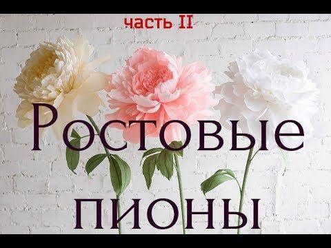 ABC TV | Cómo hacer la flor de papel de amapola de papel Crepe - Tutorial de artesanía - YouTube