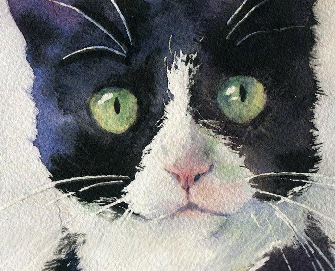 watercolor art of cats | Rachel's Studio Blog: Tuxedo and Friend Watercolor Painting