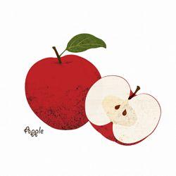 Fruit&Vegetable Illustration