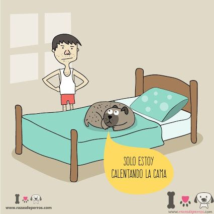 #Illustration #Ilustracion #Infantil #desviocreativo