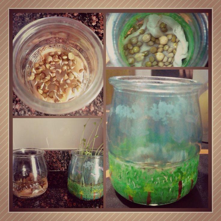 Reciclaje de vidrio, plantando unas semillas de lentejas y garbanzos, decorando los tarros (opcionalmente). Una manera divertida para reciclar y reutilizar, en este caso el vidrio, con los más pequeños.