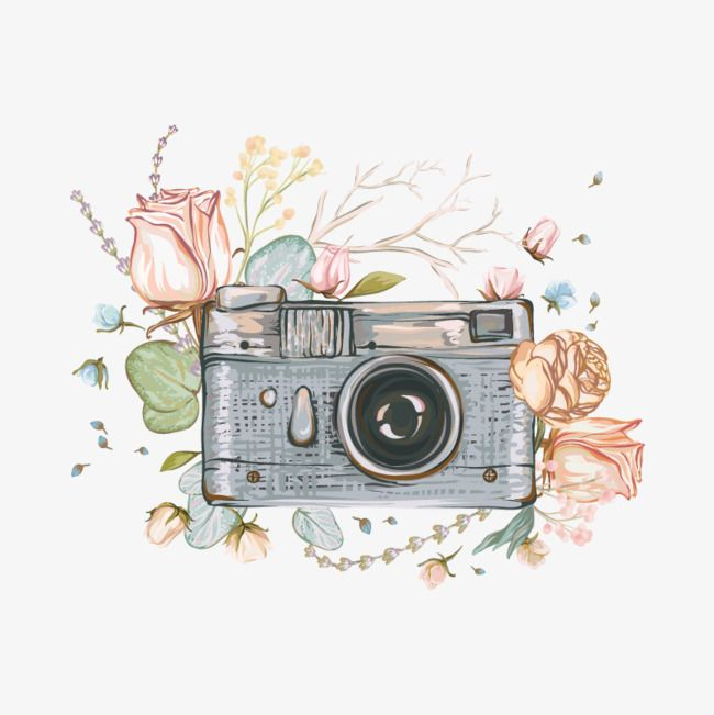 Camera Flowers Rose Reminiscence Painted Vector Camera Vector Vector Clipart Painted Clipart Camera Clipart Camera Art Retro Photo Art
