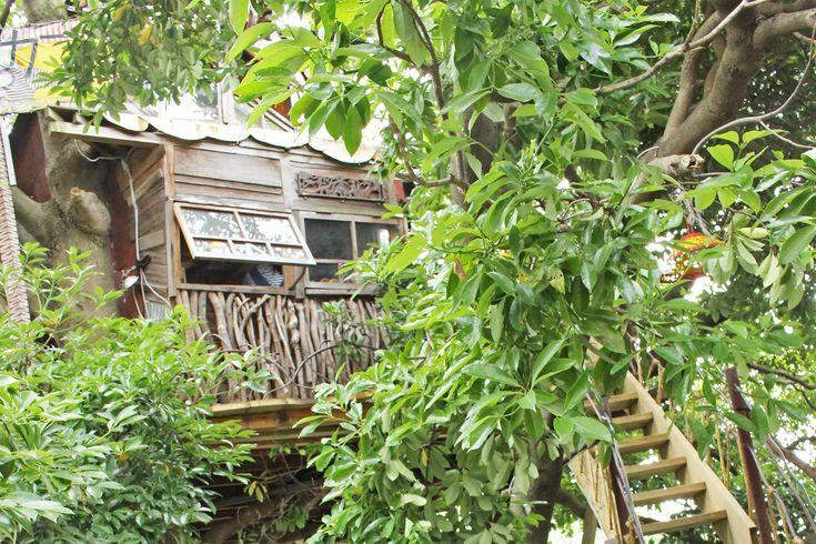 木の上の秘密基地「なんじゃもんじゃカフェ」にいってきました。