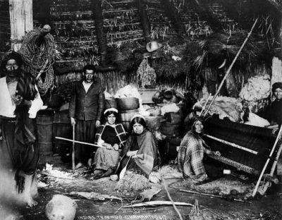 La Selva Valdiviana, 1900