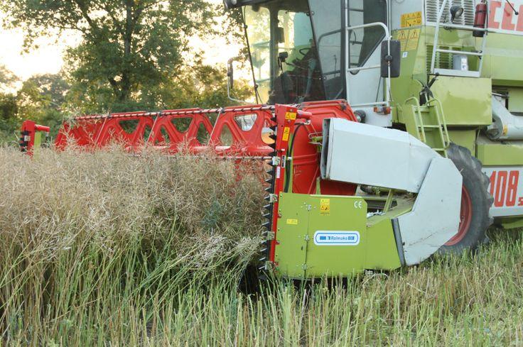 Przystawki do zbioru rzepaku Header extensions for rapeseed harvesting Приставки для уборки рапса Rapsvorsätze Rolmako www.rolmako.pl www.rolmako.com www.rolmako.de www.rolmako.fr www.rolmako.ru