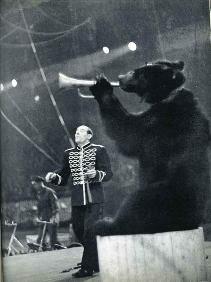 Blind Baer Jones - he should have made it on the Famous Baer board but he was never able to escape the circus.  He had the sweetest horn you ever heard and would have been one of the greats!  But instead he was forced to play nursery rhymes and the Ta-Da sound for four shows a day over 20 years. He finally died from an unfulfilled artistic yearing and a mean cotton candy dependency. Damn you, circus.