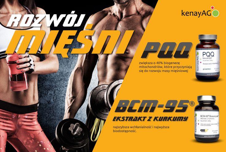 Reklama prasowa dla firmy Kenay
