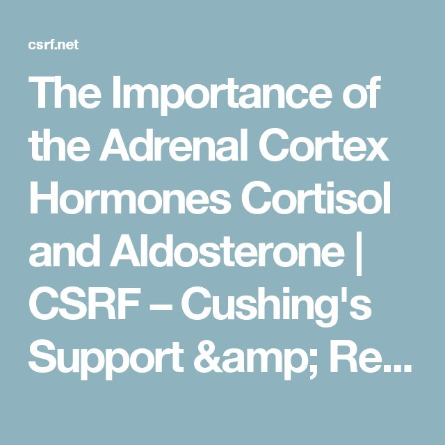 The Importance of the Adrenal Cortex Hormones Cortisol and Aldosterone   CSRF – Cushing's Support & Research Foundation