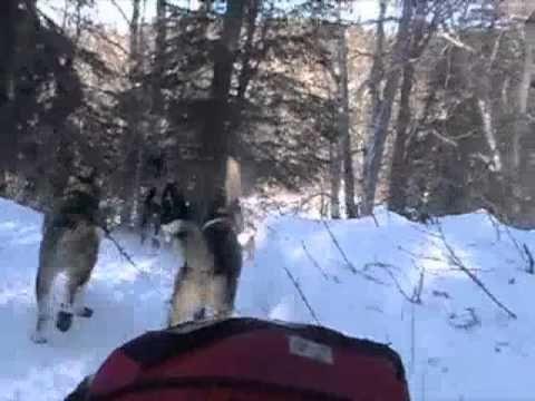 Iditarod Happy River Steps