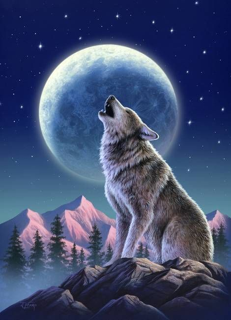 Mujer Mexicana Madre Guerrera Lobo Pinterest Wolf Wolf