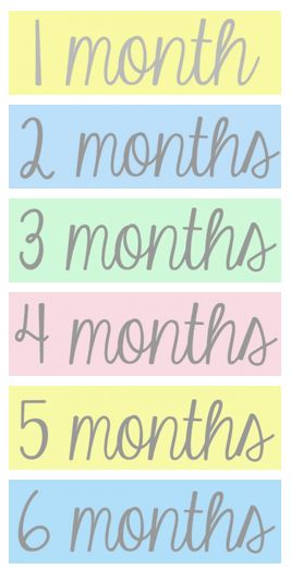 Activities and Information for Babies birth through 12 months!