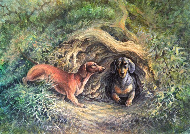 Посмотреть иллюстрацию Александр Дегтев - Норные собаки. Гладкошерстная такса.. Таксы выведены в Германии в ХIХ веке для охоты на норного зверя, происходят от небольших немецких гончих, в частности от бракка, и представляют их карликовую форму. Такса - это приземистая, растянутая собака, на коротких ногах, с мощным костяком, рельефной сухой мускулатурой. Несмотря на короткие ноги, у неё свободные движения и горделивая осанка, она подвижная, смелая и активная.  Рост кобелей в холке - 27-22…