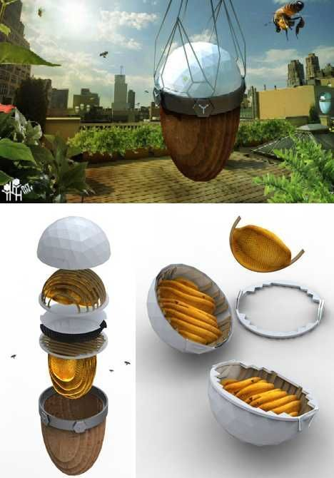 Urban Beehives For Sweet City Living