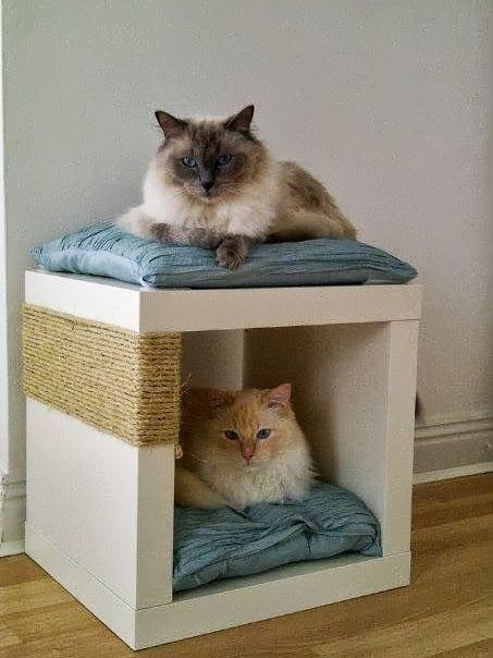 Tie sisal rope around an Expedit single shelving unit to create a scratch post and cat bed in one. | 26 Hacks That Will Make Any Cat Owner's Life Easier