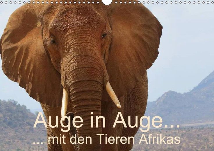 Unter folgendem Link gibt es diesen neuen Kalender http://www.calvendo.de/galerie/auge-in-auge-mit-den-tieren-afrikas/?s=Brigitte%20D%C3%BCrr&type=0&format=0&lang=1&kdgrp=0&cat=0&