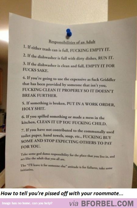 my roommate agreement is very easy to understand� funny