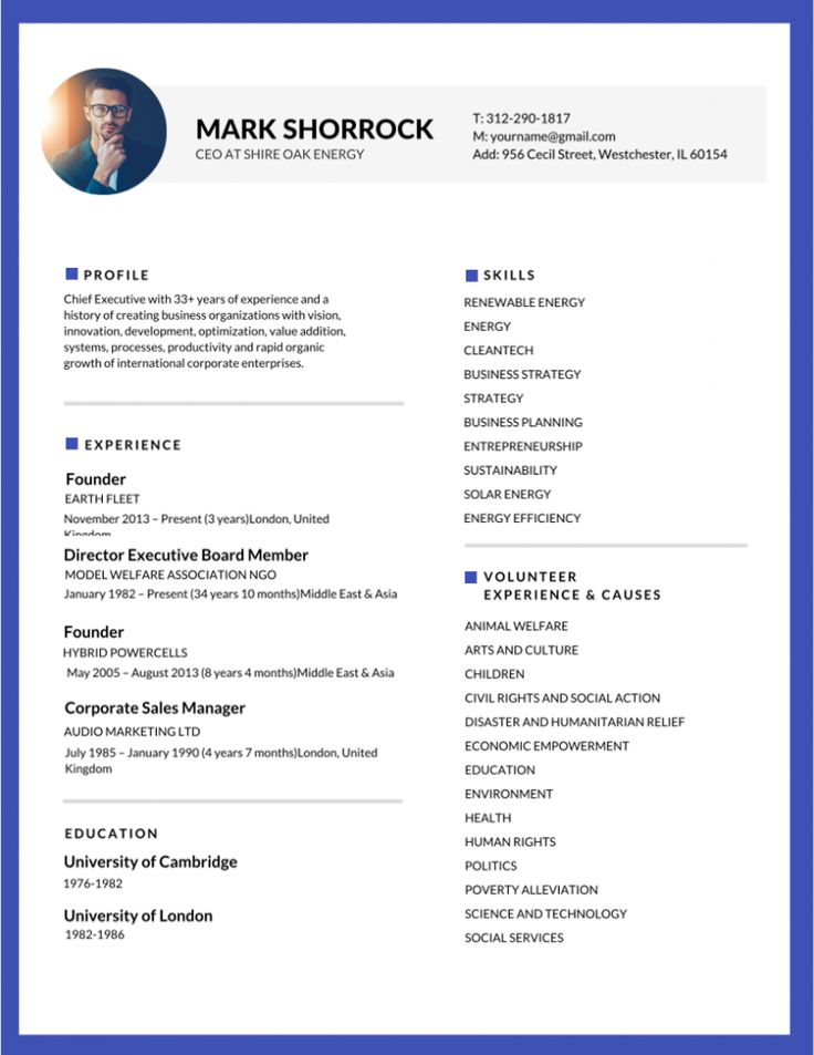 Best 25+ Sample resume format ideas on Pinterest Free resume - environmental health officer sample resume