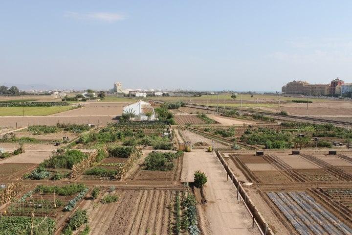 Vista general de los huertos urbanos ecológicos.