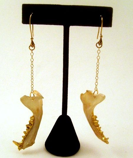 Golden Jaw Bone Earrings