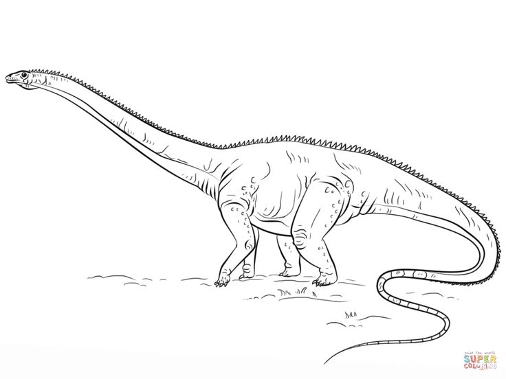 diplodocus dino  super coloring  dinosaur coloring pages