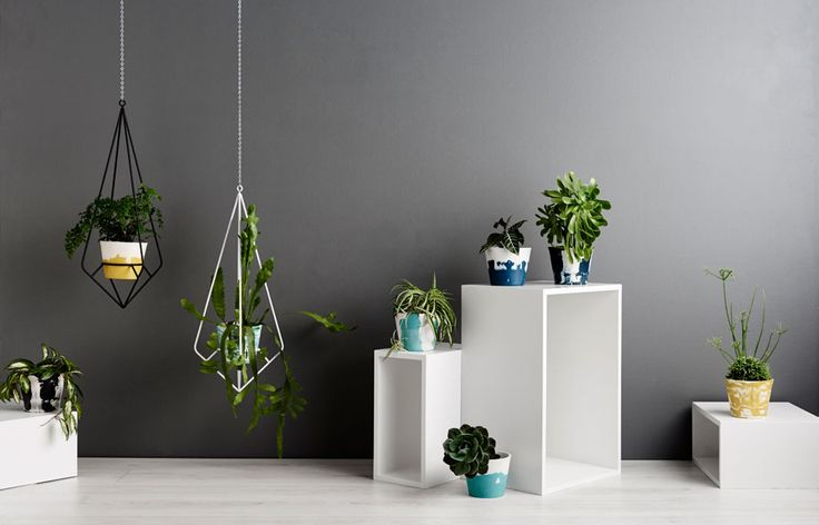 Hold your plants in a handcrafted vessel and stand by Capra Designs