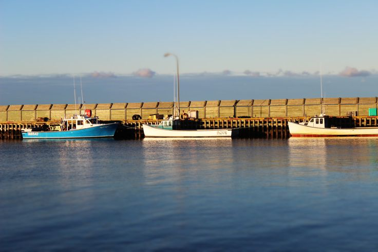 fishing boats on the harbour