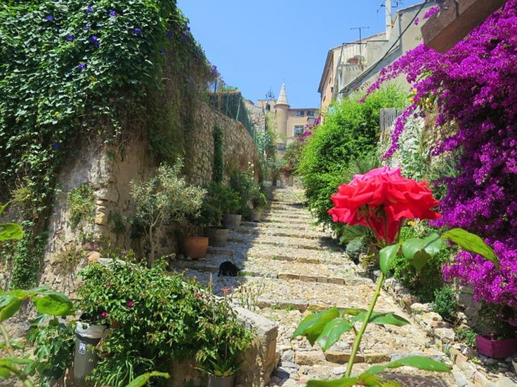 Read A weekend in Hyères: the original French Riviera