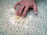 Cleaning dog urine from the carpet (vinegar, water, baking soda, hydrogen peroxide, organic dish soap)
