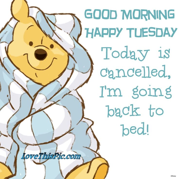 Good Morning Happy Tuesday Winnie The Pooh