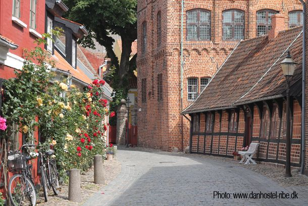 Ribe is a historic town and Scandinavia's oldest. #Denmark #Ribe #Oldtown #medieval #flowers #roses