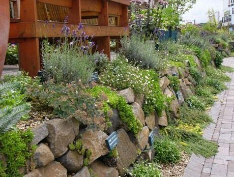 9月 « 2010 « 停車場ガーデン日記★植物とガーデンの話題満載!