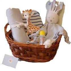 58 best baby shower gifts images on pinterest baby shower gifts organic baby gift basket for a boy organic baby gift basket organic baby shower gift negle Choice Image