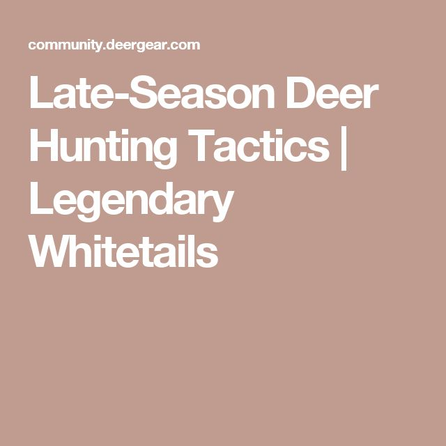 Late-Season Deer Hunting Tactics | Legendary Whitetails