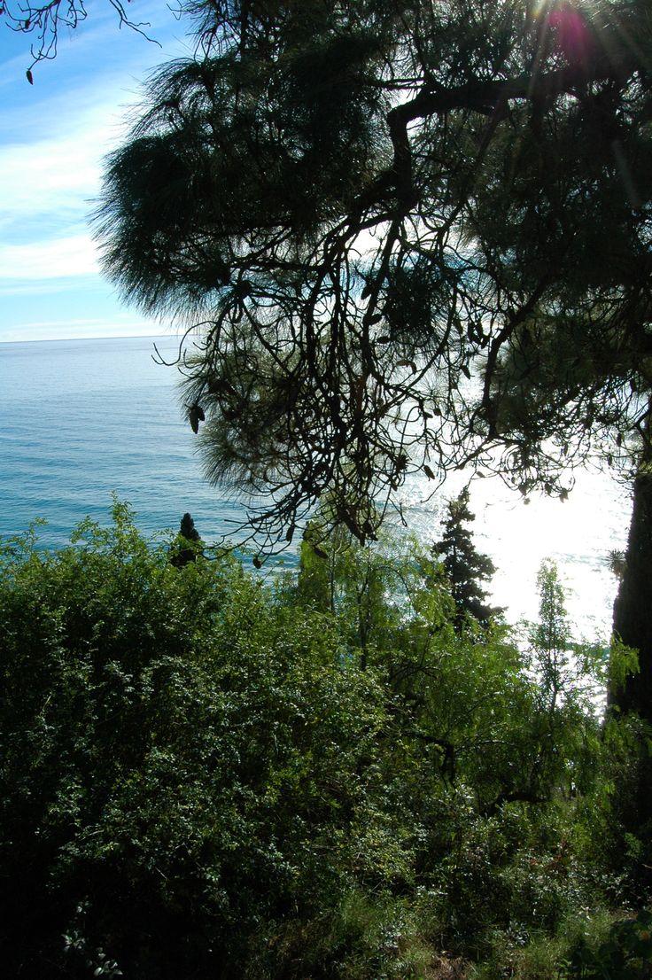 Ventimiglia (IM), Frazione Ville, zona Calandre