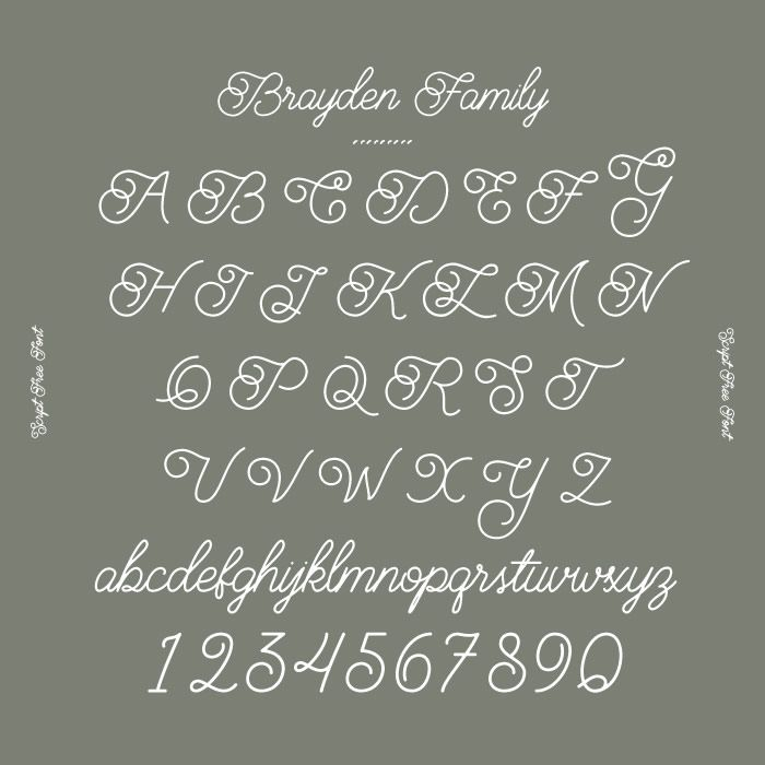 Brayden Family オシャレなデザインに取り入れたい デザイナーがこっそり教える筆記体フリーフォント7選 箱庭 Haconiwa 女子クリエーターのためのライフスタイル作りマガジン フリーフォント 筆記体 フォント