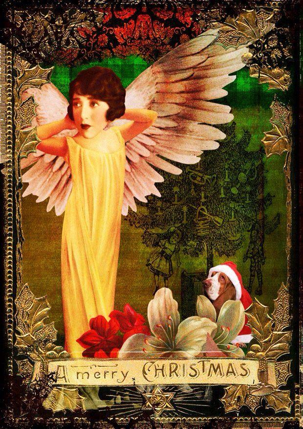 Christmas Card Collection