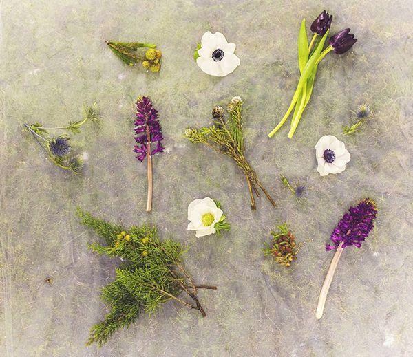 Ο γάμος των ονείρων σας! - Anatomy of a bouquet | ΑΝΕΜΩΝΕΣ - Είναι πλέον γνωστό το πόσο πολύ αγαπάμε τα λουλούδια και πόσο λατρεύουμε τις νυφικές ανθοδέσμες! Όσο πιο πρωτότυπες και ξεχωριστές τόσο το καλύτερο! Η Βαλεντίνη από το Secret Garden  μας πρότεινε για αυτό το μήνα, το δεύτερο του χειμώνα, μια ξεχωριστή χειμωνιάτικη σύνθεση με κυρίαρχο λουλούδι τις ανεμώνες! Λευκές ανεμώνες με μωβ τουλίπες και αγριολούλουδα. Π...