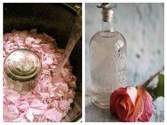 Cum se prepară apa de trandafiri   De Gen Feminin