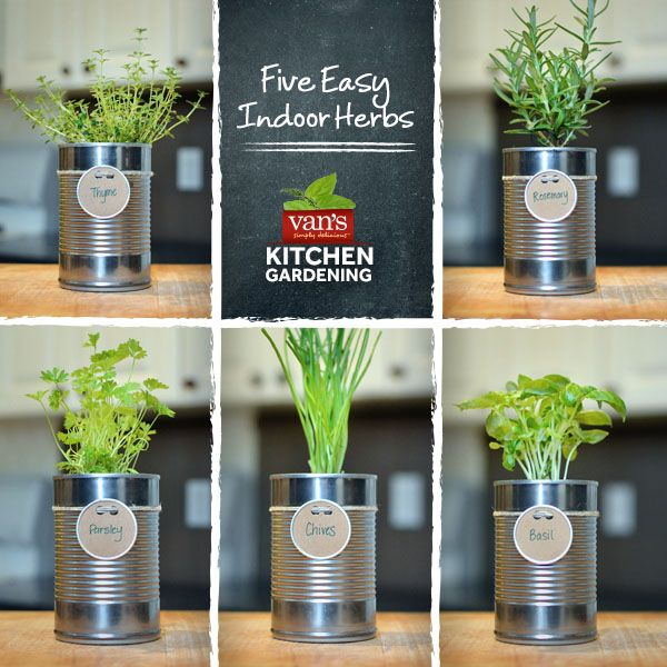 love cooking with fresh herbs start your indoor garden with these five easy to - How To Start An Indoor Herb Garden