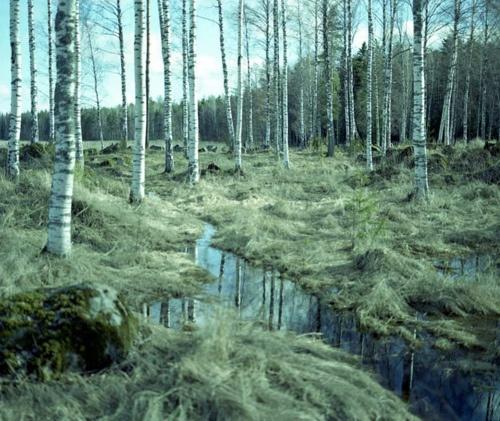 Lappeenranta sijaitsee järvi-Suomessa.Lappeenranta sijaitsee Imatran ja Saimaan lähellä.Lappeenrannassa on hyvät uintipaikat.