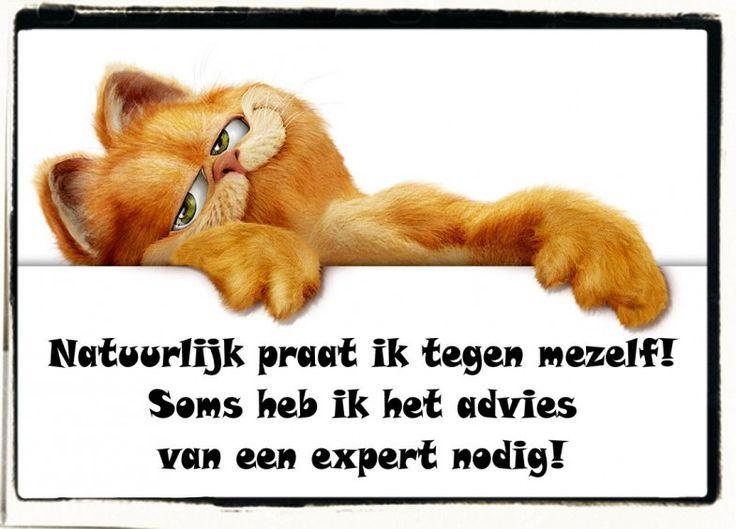 #citaten #garfield #advies Quote van de week 43-2013 -- Tekstbureau Van Ginneken
