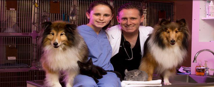 Forest Lakes Animal Clinic At Sarasota Pet Clinic Lake Animals Animals