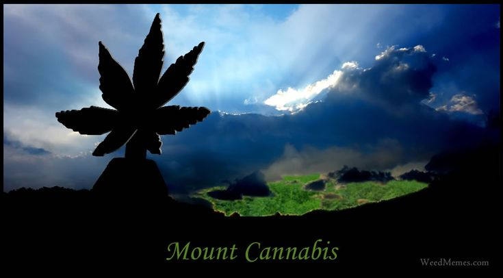 Mount Cannabis Weed Memes. Pothead memes at WeedMemes.com. Go high and climb Mt Cannabis!