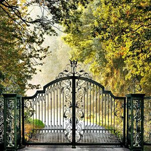 Decorative Security Gates for Driveway http://www.titandoorsandgates.com/ #SecurityGates #Gates #DrivewayGates