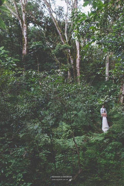 The happy bride and groom at their gorgeous elopement wedding in the enchanting forests of Magoebaskloof. Annemieke wore a bespoke Dimity wedding dress on her big day.