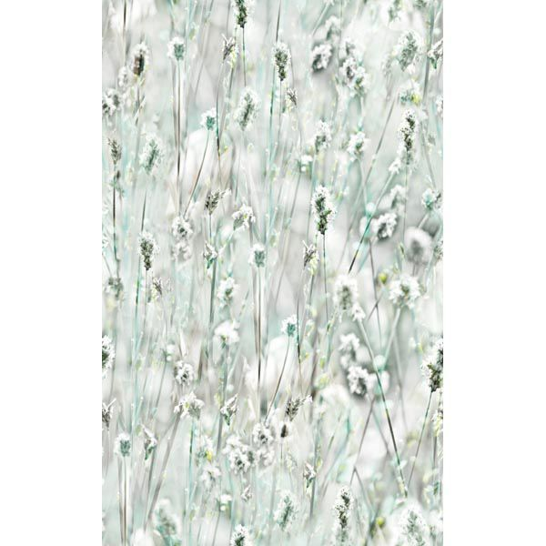This Whimsical Window Film Adds Style To Glass While Also Providing Privacy Beautiful Wildflowers Seem To Blow In T Window Vinyl Window Film Windows Wallpaper