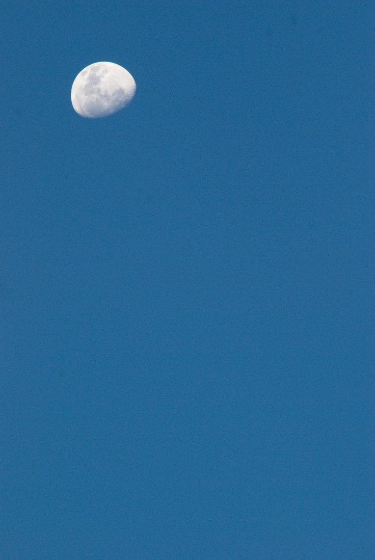 photo of moon, from my house, beautyfull right :)