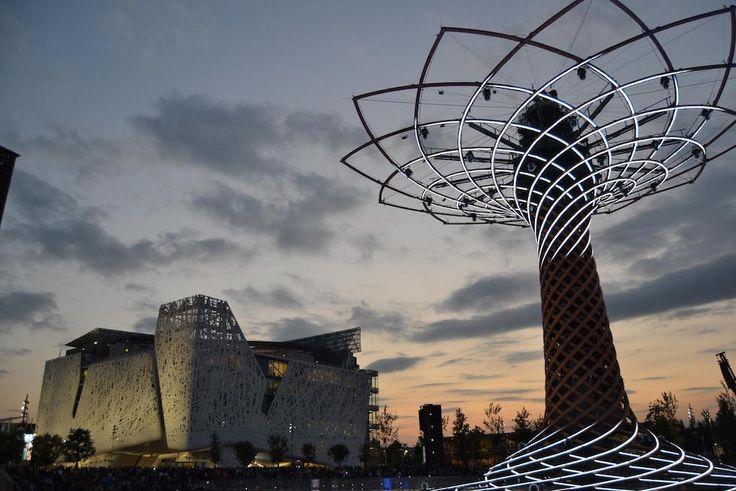 Milano albero della vita